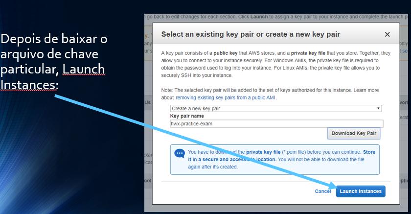 Depois de baixar o arquivo de chave particular, Launch Instances: