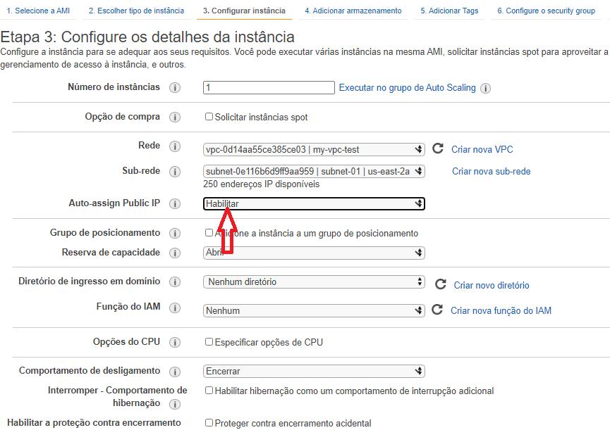 Em Auto-assign Public IP coloque Habilitar